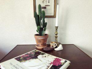 【インテリアに映える観葉植物④】ユーフォルビア・大雲閣