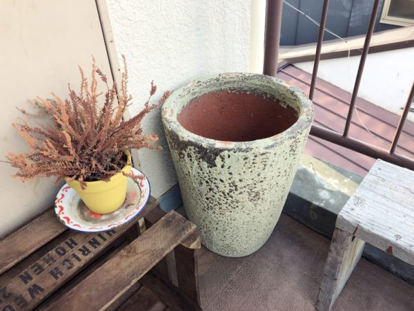 玄関先を飾ろう③/深海から引き上げたような鉢