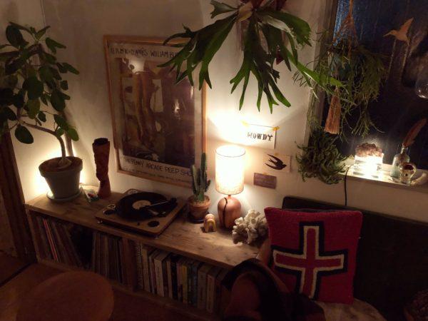 観葉植物と照明の関係②