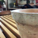 グランピエで(たまに)出会えるイスラエルの鉢