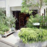 【イケてるショップのイケてる植物⑦】GENERAL FURNISHINGS & CO.