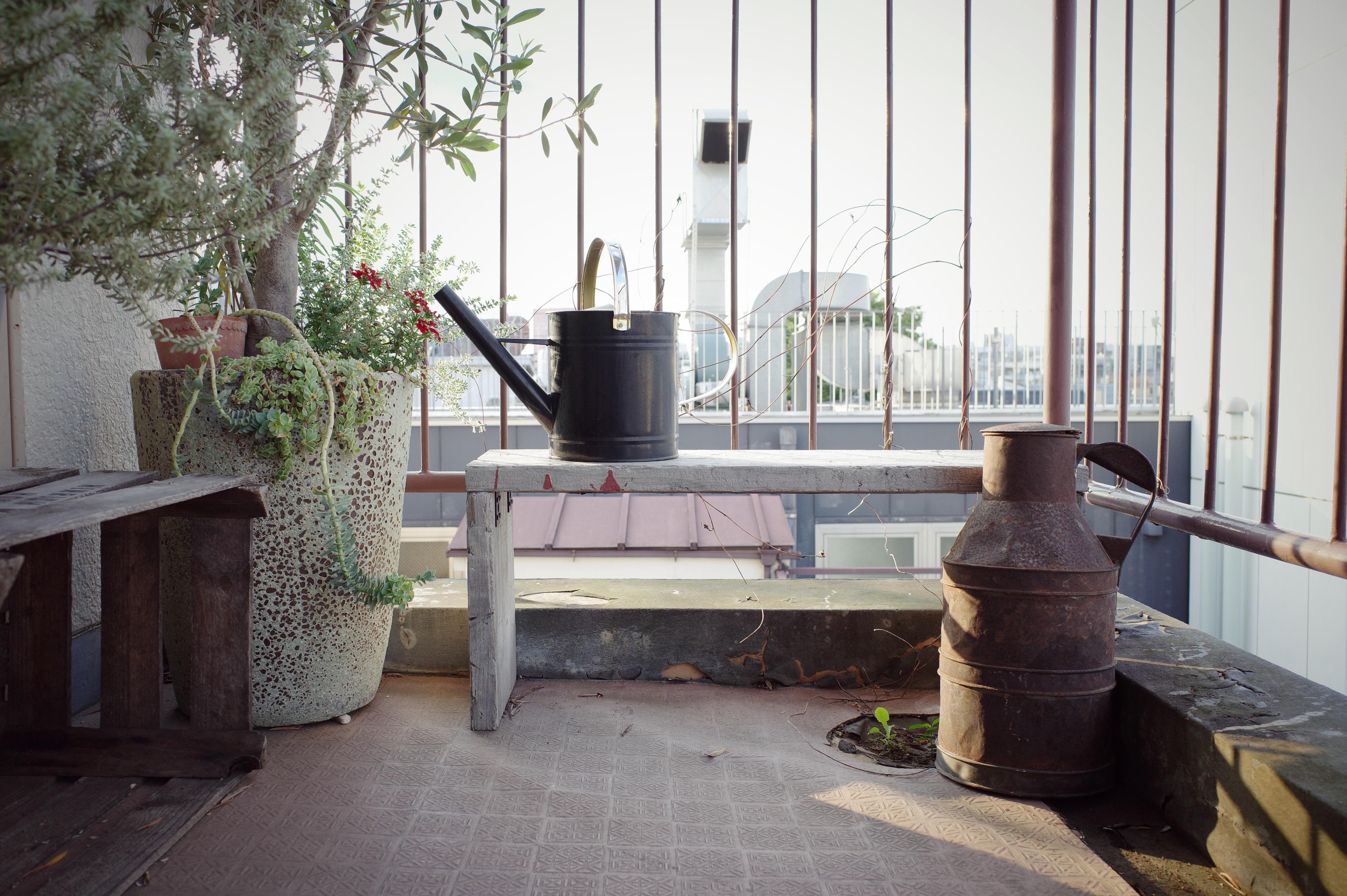 植物と相性のいいアンティークアイテム【玄関先を飾ろう⑫】