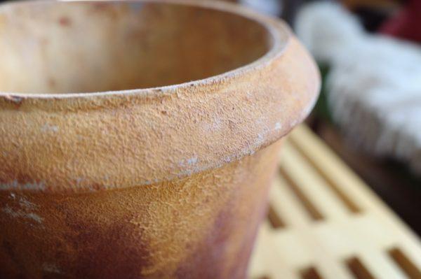 CASICA 鉢