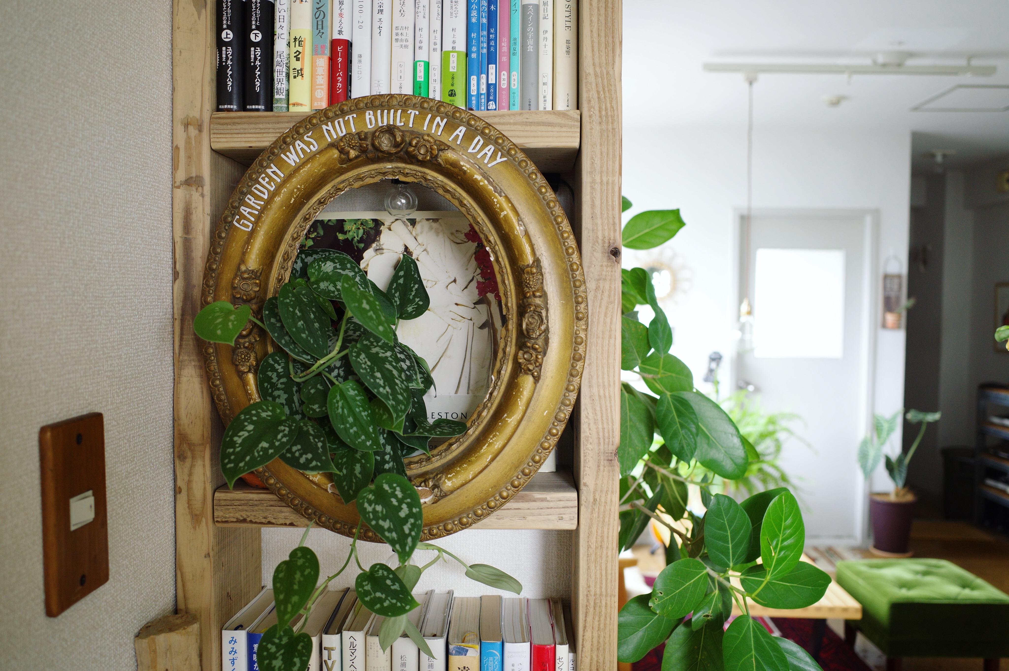 本棚 DIY ディスプレイ
