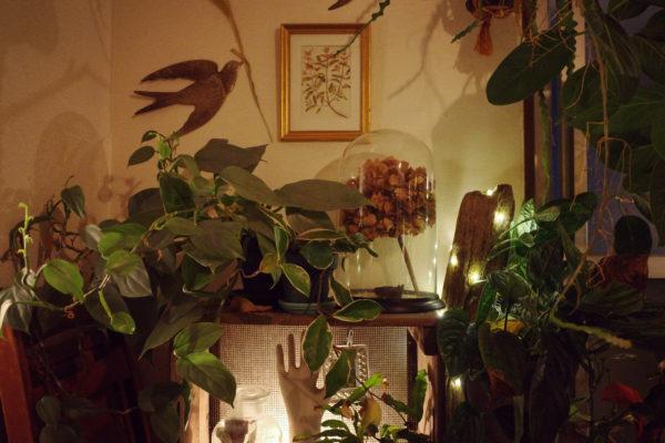 ガラスドームをドライフラワーでアレンジ【夜編】