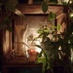 木箱 棚 ディスプレイ 照明