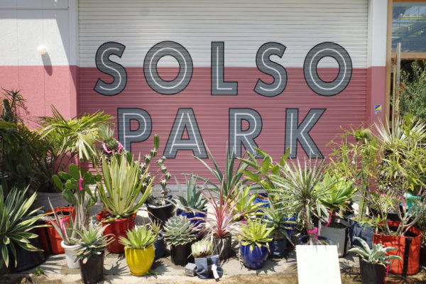 solso park