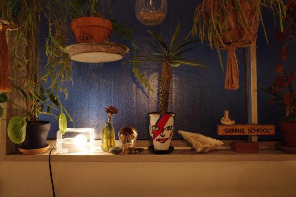 窓際 植物 間接照明